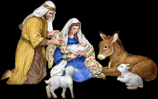 С Рождеством Христовым • Магазин спортивных товаров Sportdominator